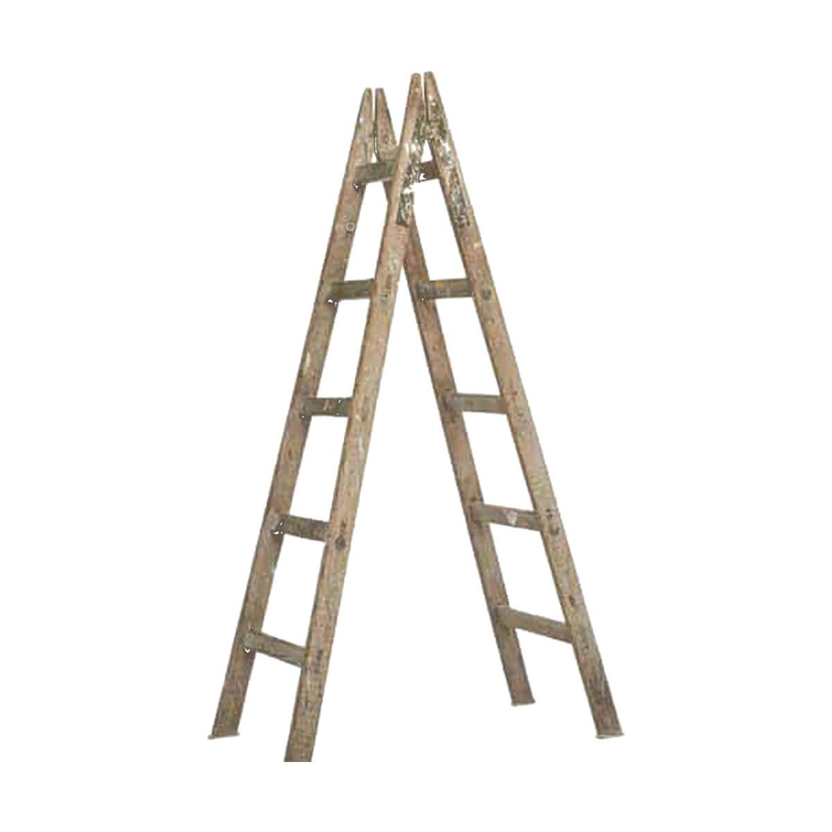 نردبان چوبی (نقاشی) دوطرفه